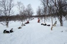 Lapplands Drag – Husky Expedition: Parkplatz