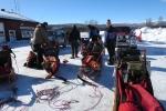 Lapplands Drag – Husky Expedition: Die Schlitten werden gepackt