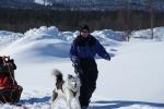 Lapplands Drag – Husky Expedition: Anspannen der Hunde