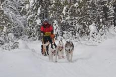 Lapplands Drag: Unermüdlich geht's voran