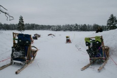 Lapplands Drag: Startvorbereitungen