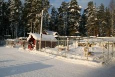 Lapplands Drag: Die Zwingeranlage
