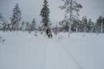 Lapplands Drag: Die Verfolger im Nacken