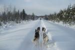 Lapplands Drag: So ein Ausblick schafft Zufriedenheit