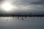 Lapplands Drag: Fahle Wintersonne