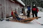 Lapplands Drag: Gut gesicherter Schlitten vor dem Start