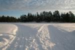 Lapplands Drag: 'Haw' links - 'Gee' rechts...