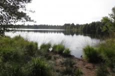 Lüneburger Heide - Grundloser See