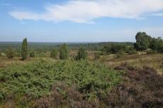 Lüneburger Heide - Blick vom Wilseder Berg