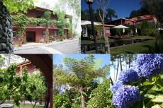 Madeira - Hotel Atrio