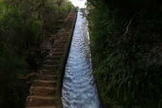 Madeira - Stairway to Heaven