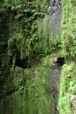 Madeira - Wasserfall an Levada da Janela