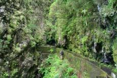 Madeira - Levada oberhalb des Weges