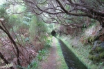Madeira - Levada da Rocha Vermelha