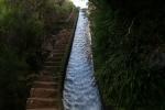 Madeira - Stairway to Heaven