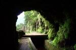 Madeira - Blick aus dem Tunnel