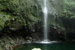 Madeira - Caldeirao Verde