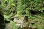 Madeira - Vor dem Pico Ruivo Tunnel