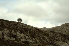 Mallorca - karge Landschaft