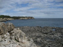 Mallorca - Cala Mondrago