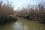 Mallorca - Naturpark s'Albufera