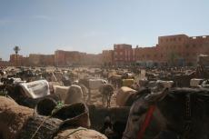 Marokko: Esel-Parkplatz