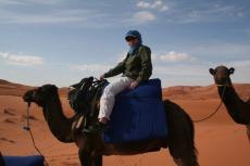 Marokko: Fest im Sattel