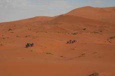 Marokko: Ein Teil unserer Karawane im Erg Chebbi