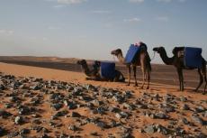 Marokko: Pause im Fossilienfeld