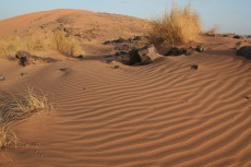 Marokko: Wind formt Sand