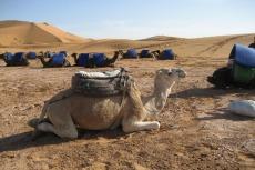 Marokko: Gleich geht's los...