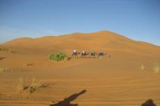 Marokko: Die Karawane zieht weiter...