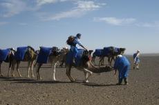 Marokko: Tourguide Ali auf dem Kamel - ein seltener Anblick