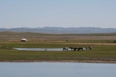 Mongolei: Eine einsame Jurte
