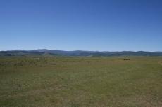 Mongolei: Viehherden im Orkhon-Tal