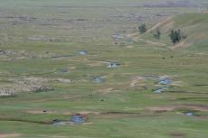 Mongolei: Natürlicher Flusslauf