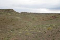 Mongolei: Karge Landschaft