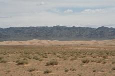 Mongolei: Kamele bei Khongoryn Els