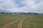 Mongolei: Gebirgssteppe