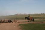 Mongolei: Nomaden mit Ziegenherde