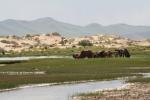 Mongolei: Fluss vor Dünenlandschaft
