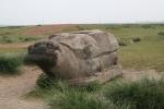 Mongolei: Steinschildkröte