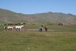 Mongolei: Nomaden mit ihrer Pferdeherde