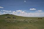Mongolei: Unsere Autos in der Steppe
