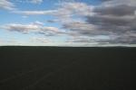 Mongolei: Weite, dieses Mal in Schwarz