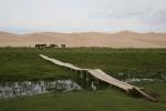 Mongolei: Pferde vor den Dünen von Khongoryn Els