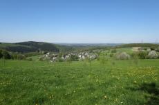 Natursteig Sieg #12 - Dauersberg
