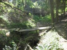 Natursteig Sieg #5 - Sieghöhenweg