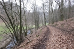 Natursteig Sieg #6 - Staatsforst Neunkirchen-Seelscheid