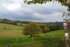 Entdeckerschleife: Biohöfe im Windrather Tal
